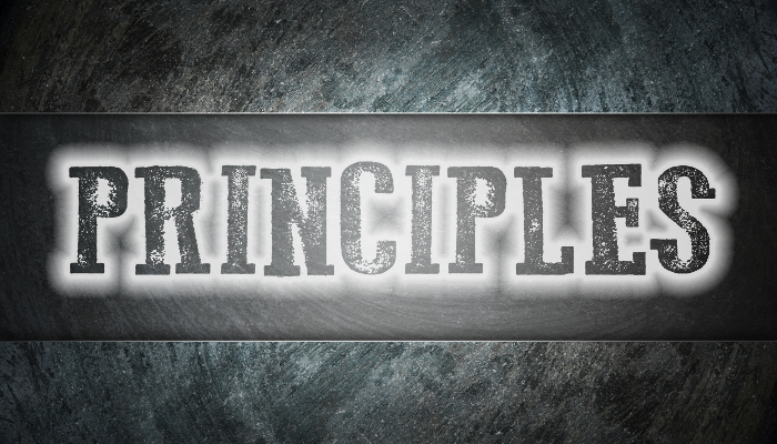 Examining the Twelve Principles of Agile