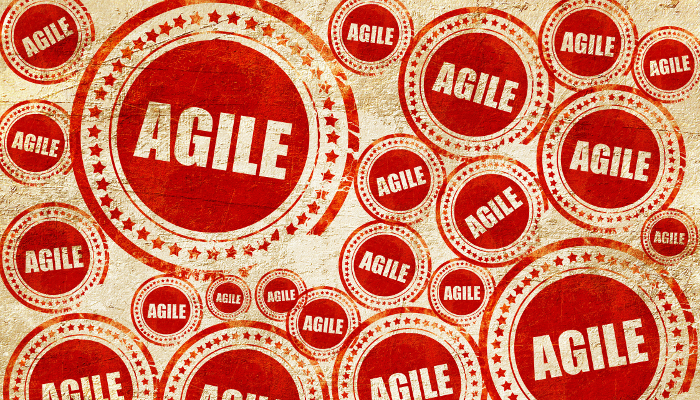 What Does an Agile Culture Look Like?